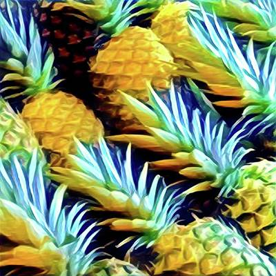 Photograph - Pineapples by Marco Domeniconi