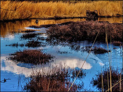 New Jersey Pine Barrens Photograph - Pineland Cloud Reflections by Louis Dallara