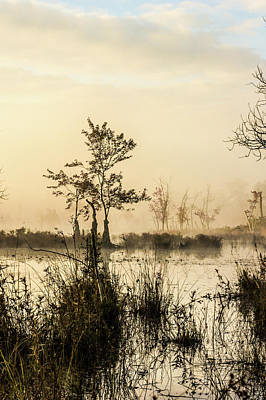 Pine Barrens Photograph - Pinelands - Mullica River by Louis Dallara