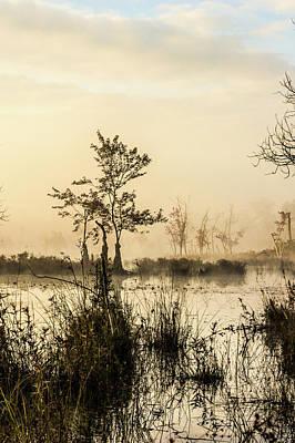 Pinelands - Mullica River Print by Louis Dallara