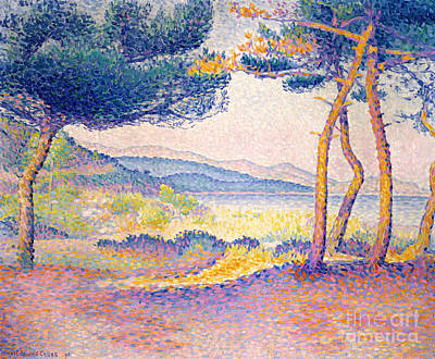 Clearing Painting - Pines Along The Shore, 1896 by Henri Edmond Cross