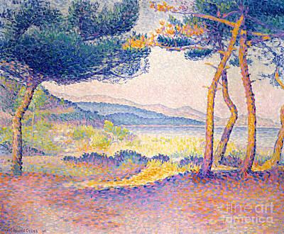 Edmond Cross Painting - Pines Along The Shore, 1896 by Henri Edmond Cross
