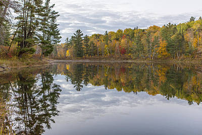 Itasca State Park Photograph - Pines And Reflections by Tim Grams