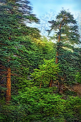 Digital Art - Pines In Morning Light by Joel Bruce Wallach