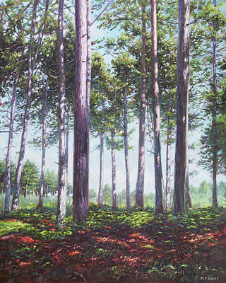 Painting - Pines In New Forest Shade by Martin Davey