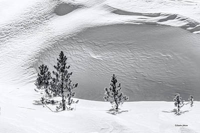 Photograph - Pines In Snow Drifts Black And White by Stephen Johnson