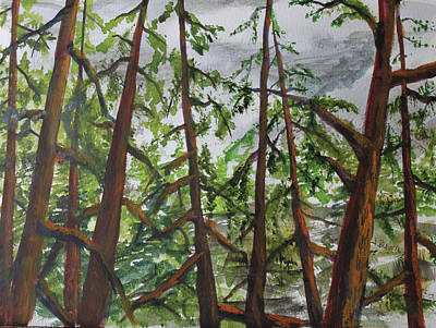 Painting - Pines by Jack G Brauer