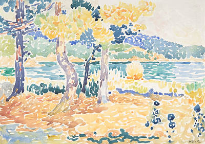 Pointillist Drawing - Pines On The Coastline by Henri-Edmond Cross