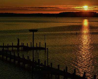 Photograph - Piney Point Too by Robert McCubbin