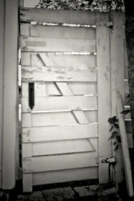 Photograph - Pinhole Gate 3145 by Rudy Umans