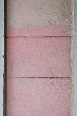 Photograph - Pink 2 by Colleen Williams