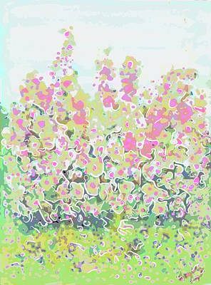 Painting - Pink Abstract  by Don Wright