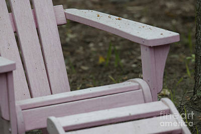 Photograph - Pink Adirondack by Dale Powell