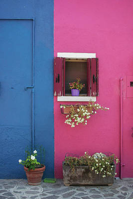 Photograph - Pink And Blue by Christopher Rees