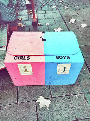 Treasure Box Photograph - Pink And Blue Crate by Tom Gowanlock