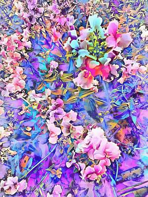 Photograph - Pink And Blue Fusion by Dorothy Berry-Lound