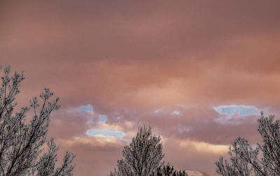 Photograph - Pink And Blue by Nancy Marie Ricketts
