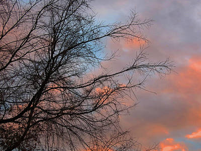 Photograph - Pink And Blue Sunset by Laurel Powell