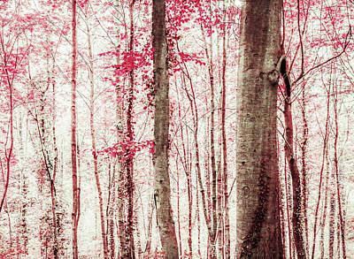 Photograph - Pink And Brown Fantasy Forest by Brooke T Ryan