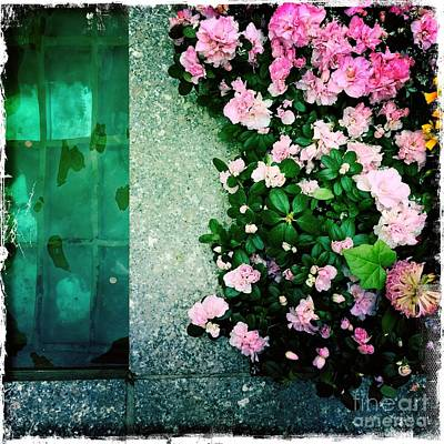 Photograph - Pink And Green - The Waters Of Rockefeller Center by Miriam Danar