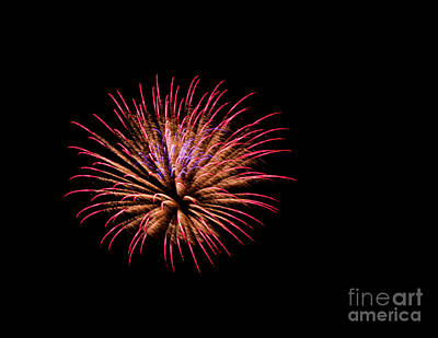 Photograph - Pink And Orange Fireworks by Suzanne Luft