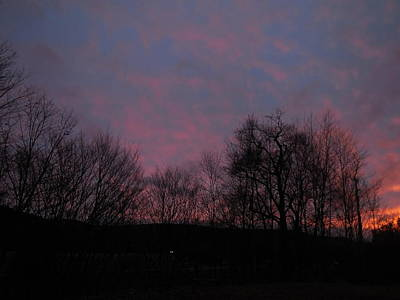 Photograph - Pink And Purple Sunset by Jacqueline Madden