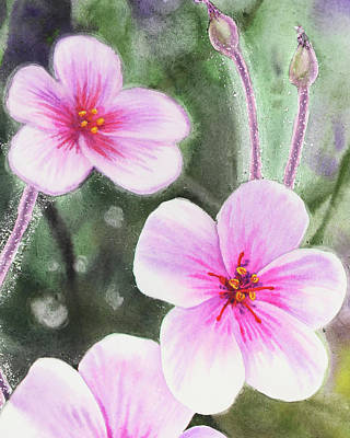 Royalty-Free and Rights-Managed Images - Pink And Purple Watercolor Flowers by Irina Sztukowski