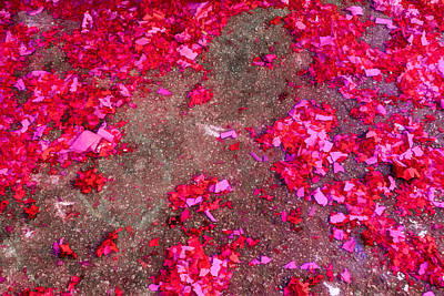 Photograph - Pink And Red Firecracker Debris Abstract by Bonnie Follett