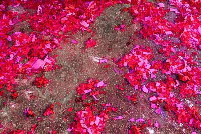 Pink And Red Firecracker Debris Abstract Original by Bonnie Follett
