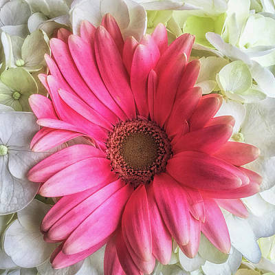 Vibrant Color Photograph - Pink And White Bouquet by Andrew Soundarajan