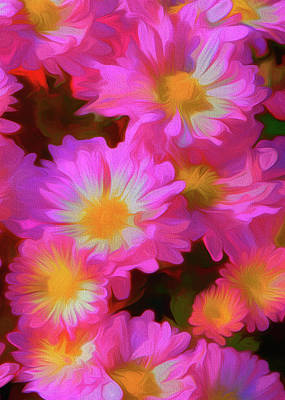 Digital Art - Pink And White Daisies by Ron Grafe