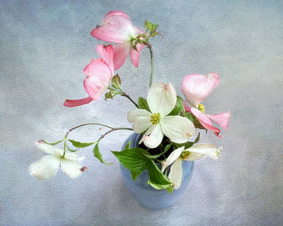 Photograph - Pink And White Dogwood Still by Louise Kumpf