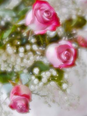 Photograph - Pink And White Rose Bouquet by Diane Alexander
