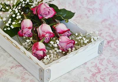 Pink And White Roses In White Box Art Print