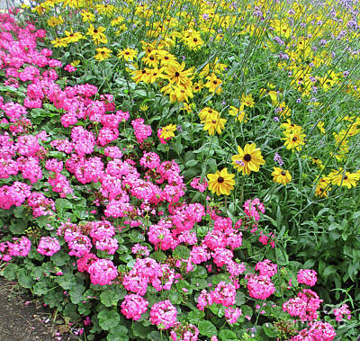Photograph - Pink And Yellow Flowers by Randall Weidner
