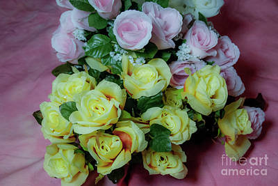 Photograph - Pink And Yellow Roses by Scott Hervieux