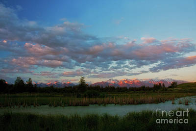 Photograph - Pink At Night by Katie LaSalle-Lowery