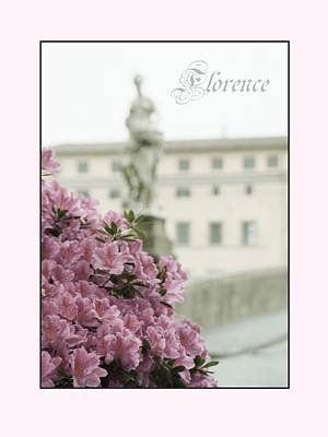 Photograph - Pink Azaleas Of Florence by Patricia Strand