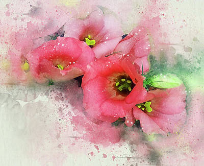 Digital Art - Pink Babies A by Peggy Cooper
