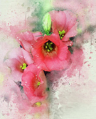 Photograph - Pink Babies.jpg by Peggy Cooper