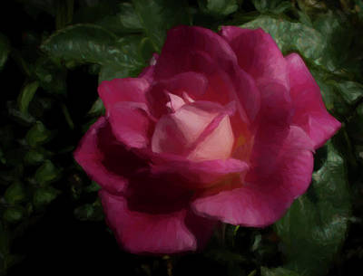 Digital Art - Pink Beauty by Ernie Echols