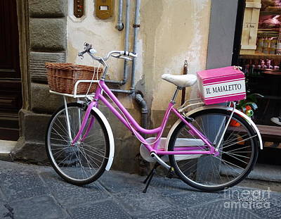 Photograph - Pink Bicycle by Lainie Wrightson