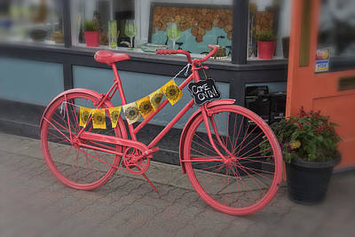 Photograph - Pink Bicycle Leadville Colorado Dsc06600 by Greg Kluempers
