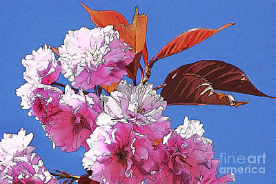 Digital Art - Pink Blossom by Wendy Wilton