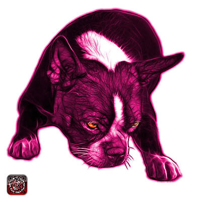 Mixed Media - Pink Boston Terrier Art - 8384 - Wb by James Ahn
