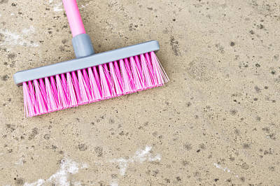 Broom Wall Art - Photograph - Pink Broom by Tom Gowanlock