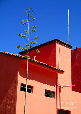 Photograph - Pink Building by Randall Weidner
