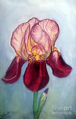 Pink Burgundu Iris Flower Art Print by Sofia Metal Queen