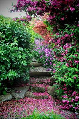 Photograph - Pink Carpet by Nancy Pauling