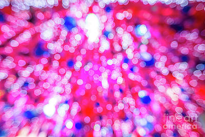 Photograph - Pink Christmas Tree by Benny Marty
